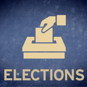 ElectionIcon