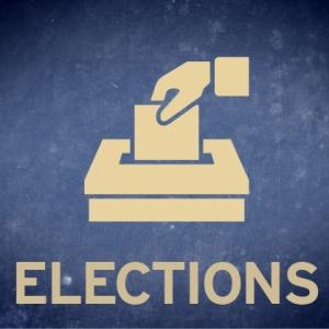 ElectionIcon